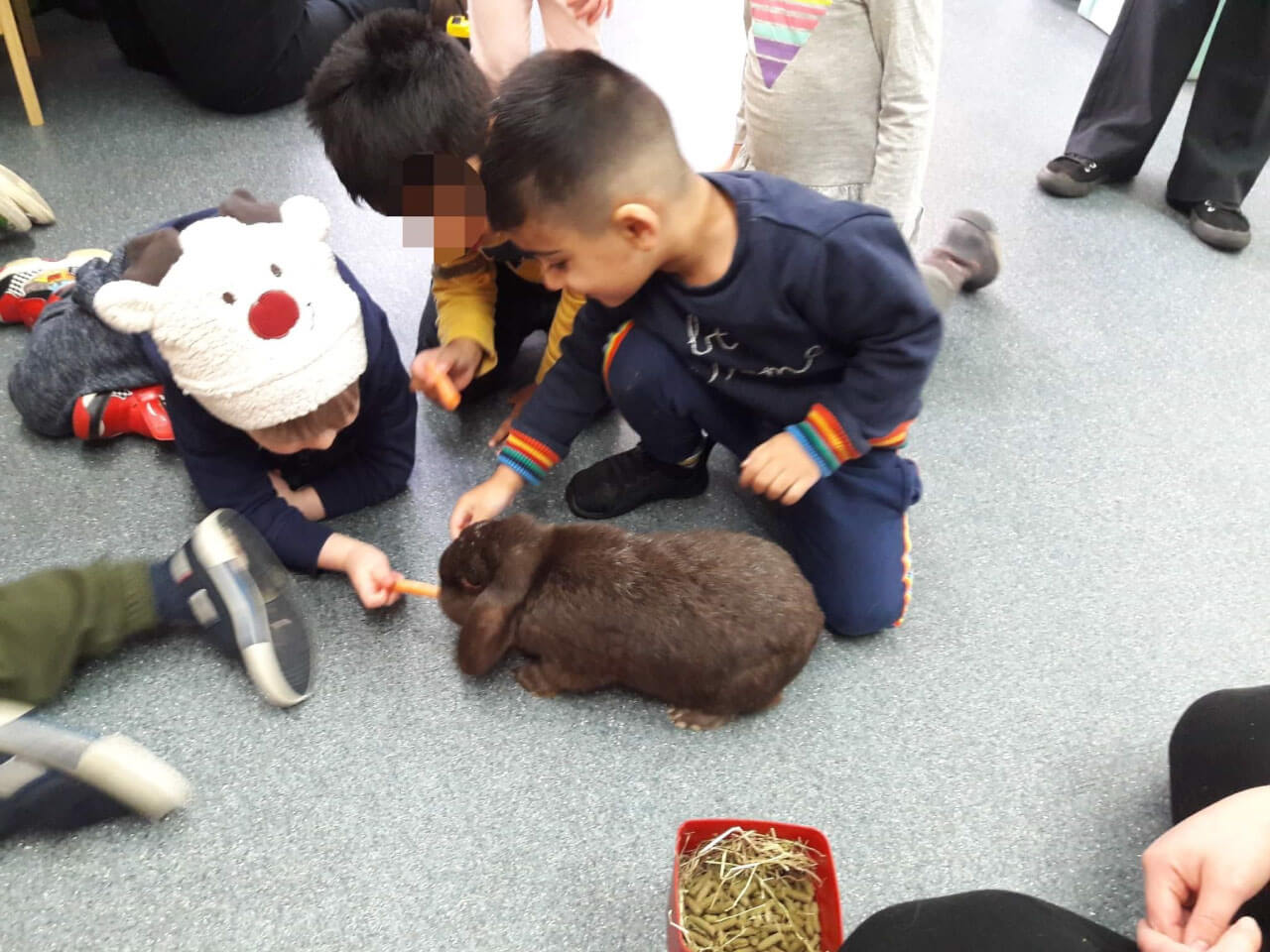 Group of young toddlers enjoy informative lesson about rabbits from local vet in Birmingham nursery